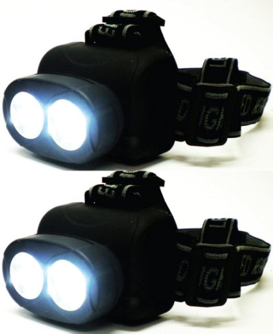 うなる発音政府高輝度 NEW ヘッドライト 2個組