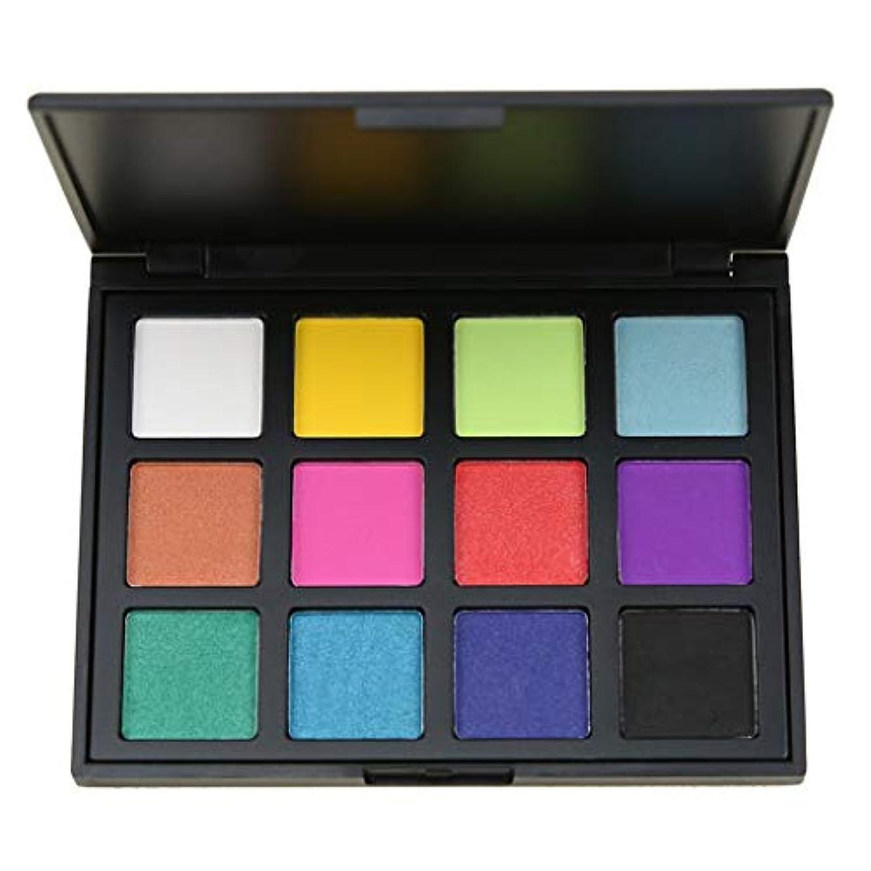 目立つ速記マニアックKimyuo 12色スモーキーアイシャドーパレット長続きがする化粧アイシャドー防水美容マット化粧品セット