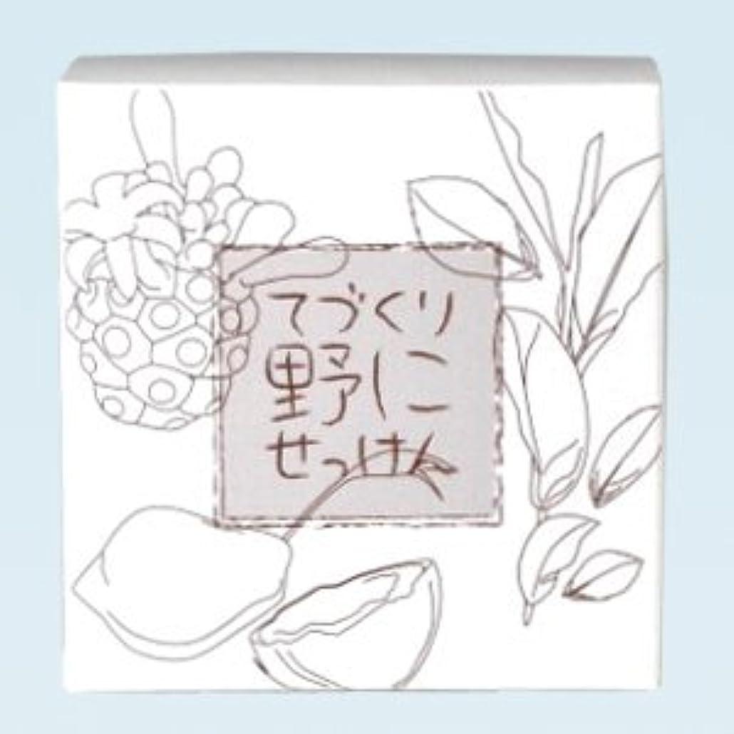 活発中国引き出す緑茶ノニ石鹸 てづくり野にせっけん(115g)