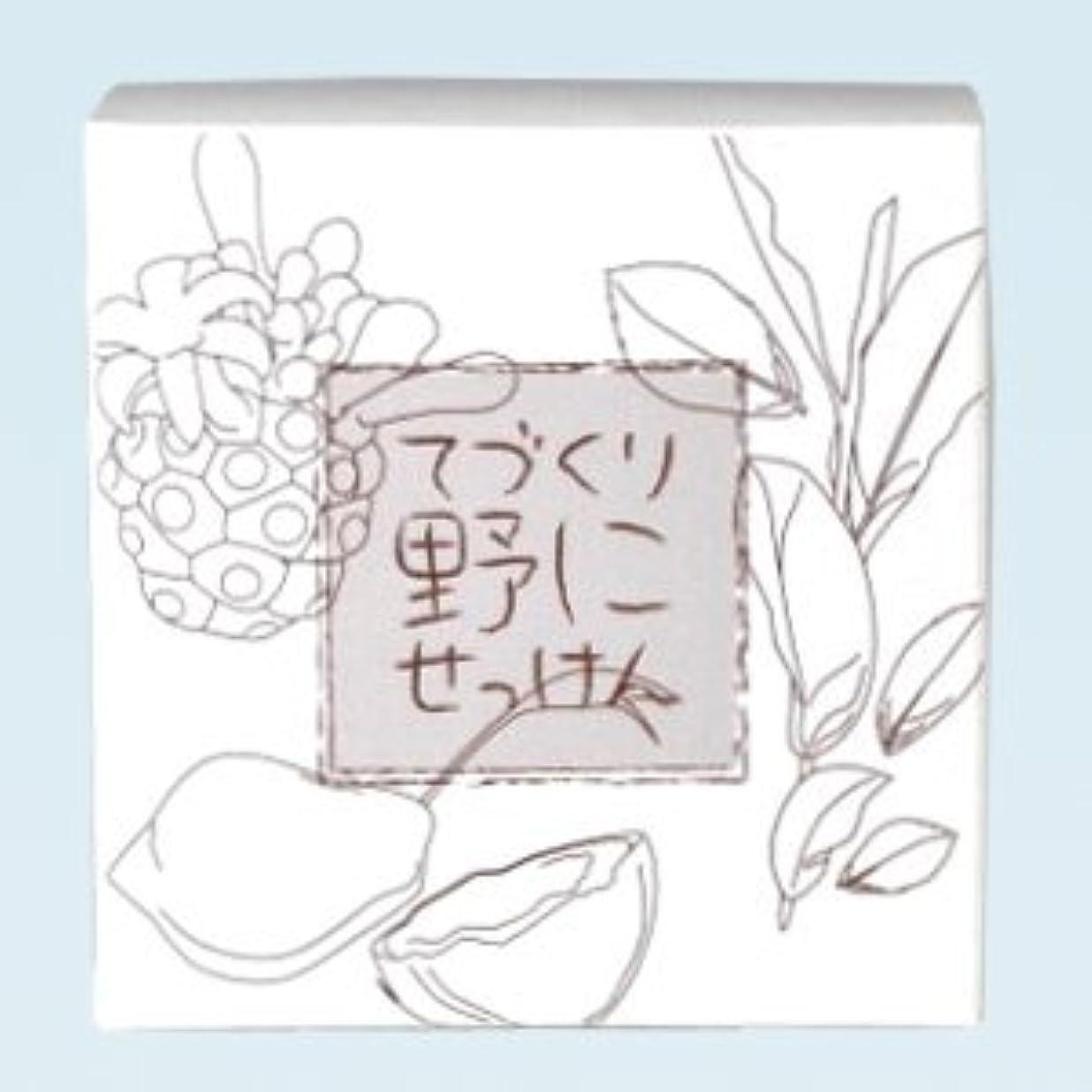 音楽を聴く甲虫転送緑茶ノニ石鹸 てづくり野にせっけん(115g)
