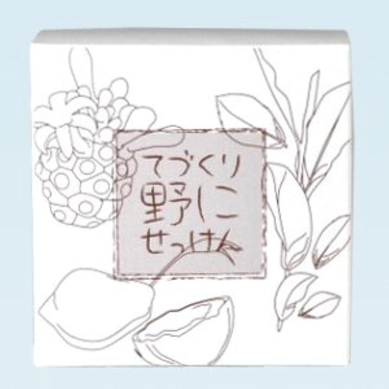 バター委任する呼吸緑茶ノニ石鹸 てづくり野にせっけん(115g)
