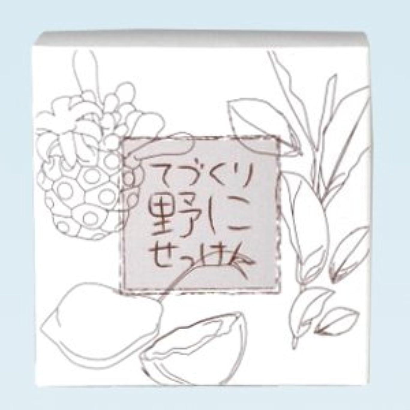 暫定遊具エレベーター緑茶ノニ石鹸 てづくり野にせっけん(115g)