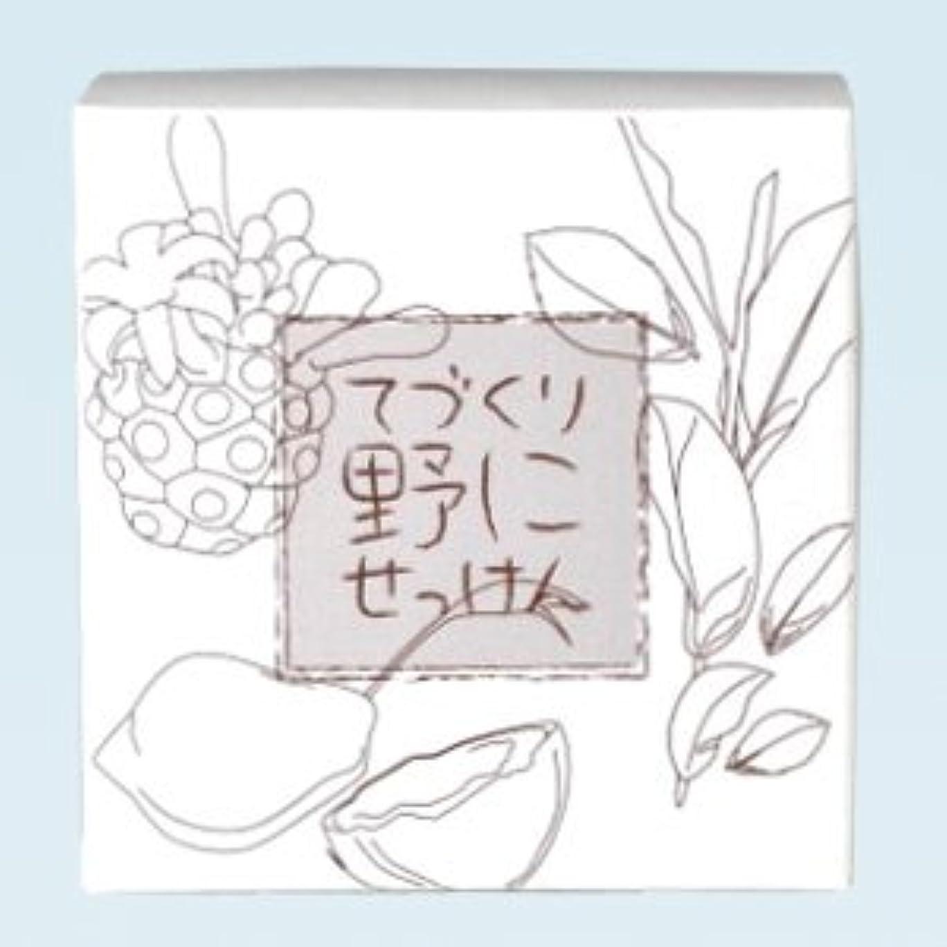 欠乏電気手のひら緑茶ノニ石鹸 てづくり野にせっけん(115g)