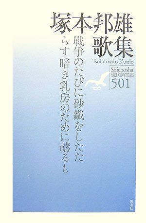 塚本邦雄歌集 (現代詩文庫)の詳細を見る
