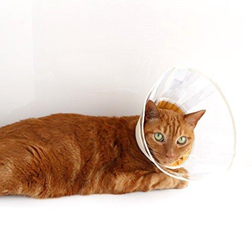 nekozuki エリザベスカラー フェザーカラー クリア ベージュ Sロング ソフト 猫