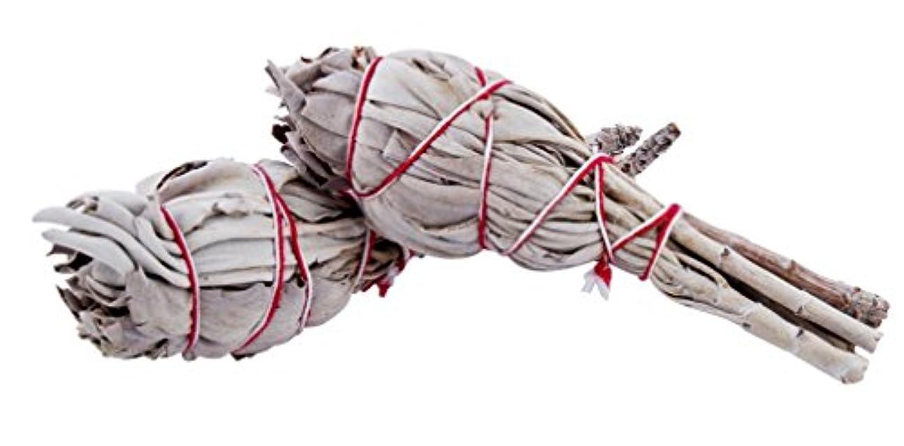 大使館樫の木チャペルカリフォルニアホワイトセージスマッジSticks