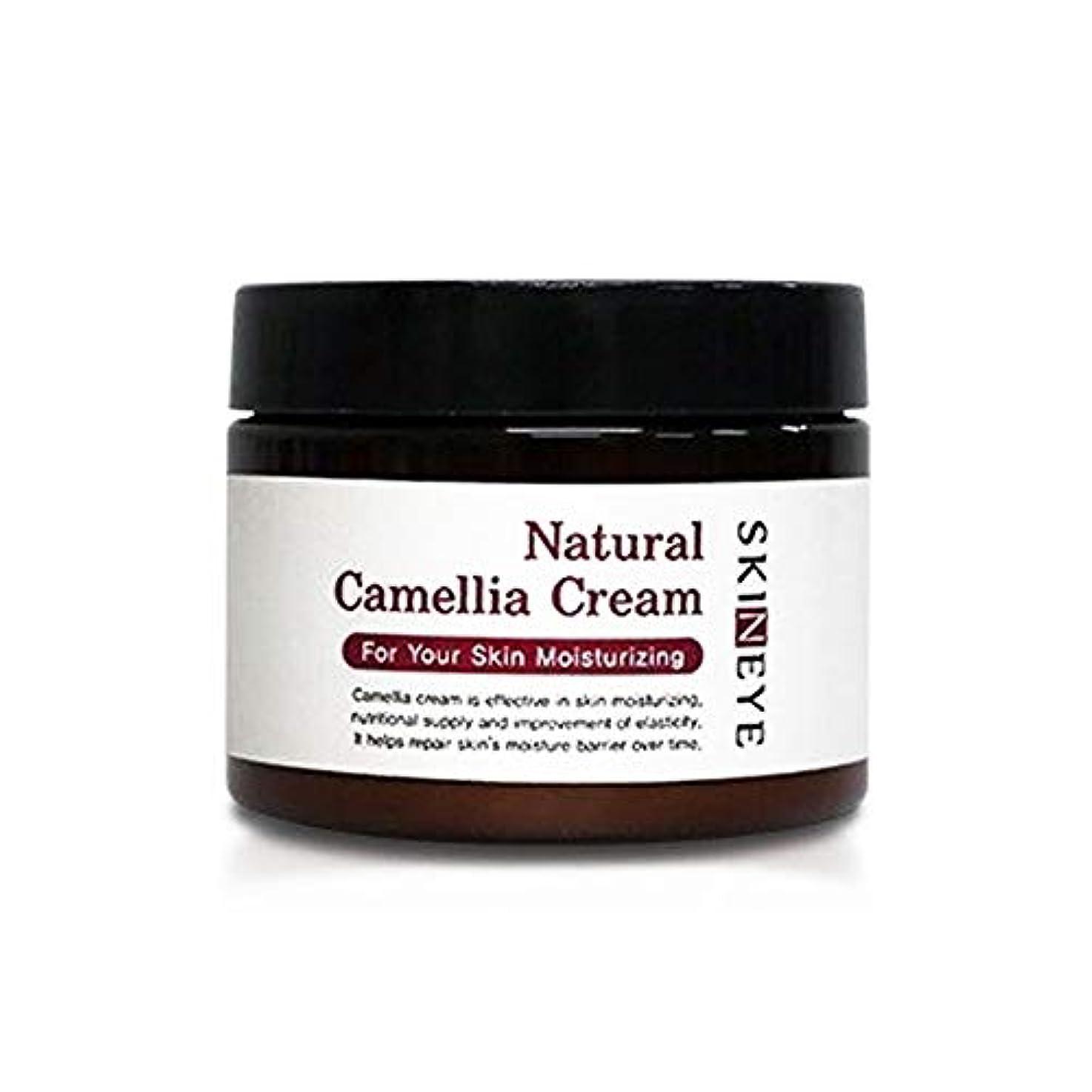 経験者再生矢スキンアイナチュラル・発効、椿、クリーム100ml保湿クリーム、Skineye Natural Camellia Cream 100mlMoisturizing Cream [並行輸入品]