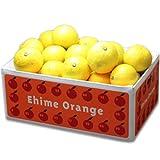 訳あり愛媛ニューサマーオレンジ(小夏)5kg フルーツ 果物 通販
