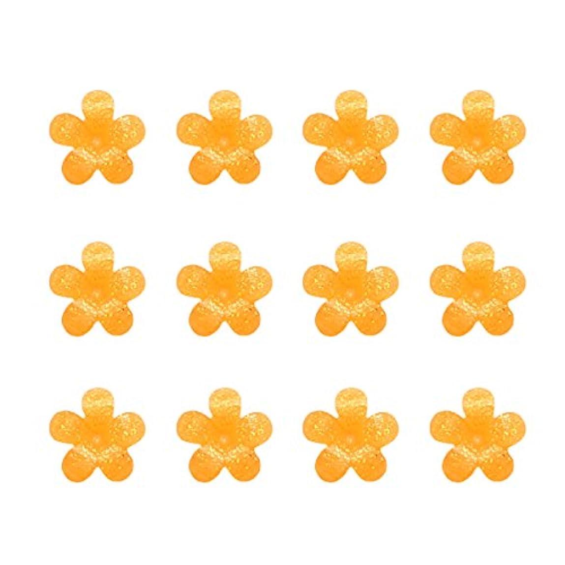 バケツ葉を拾う抽象化Bonnail×RieNofuji シャルマンシュクル オランジュプティ