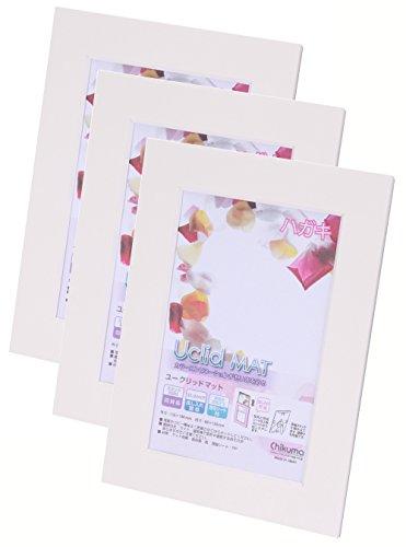 Chikuma フォトフレーム Uclidマット ハガキ ホワイト 3冊セット 30014-4