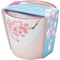 聖新陶芸 盆彩栽培セット 桜 GD-45301