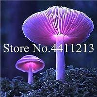 !100個/袋盆栽マッシュルームガーデン装飾ミニチュア植物ポットフェアリーDIYドールハウス、販売のための植物実生:22