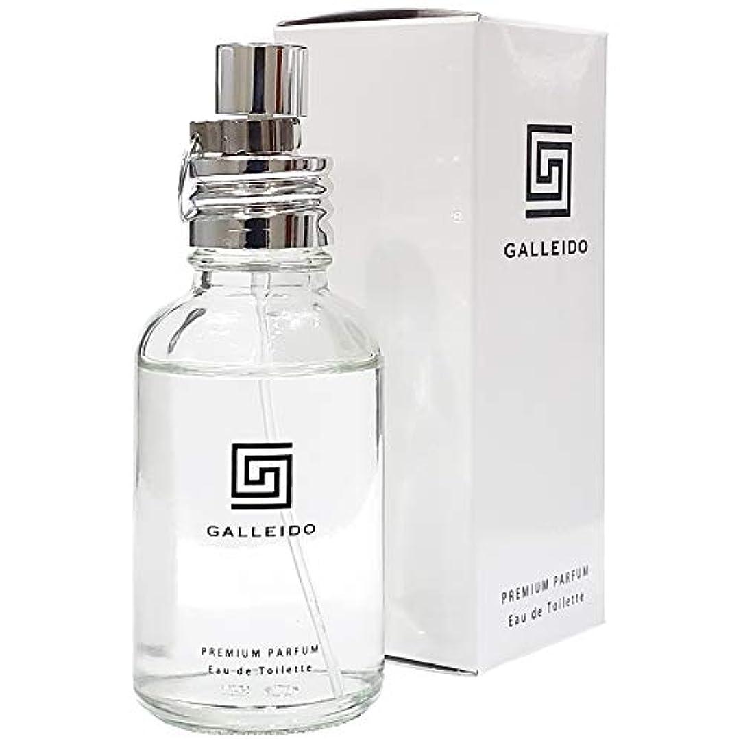 分類行き当たりばったりラッシュGALLEIDO PREMIUM PARFUM(ガレイド プレミアム パルファム)(男性 メンズ 香水)(単品)