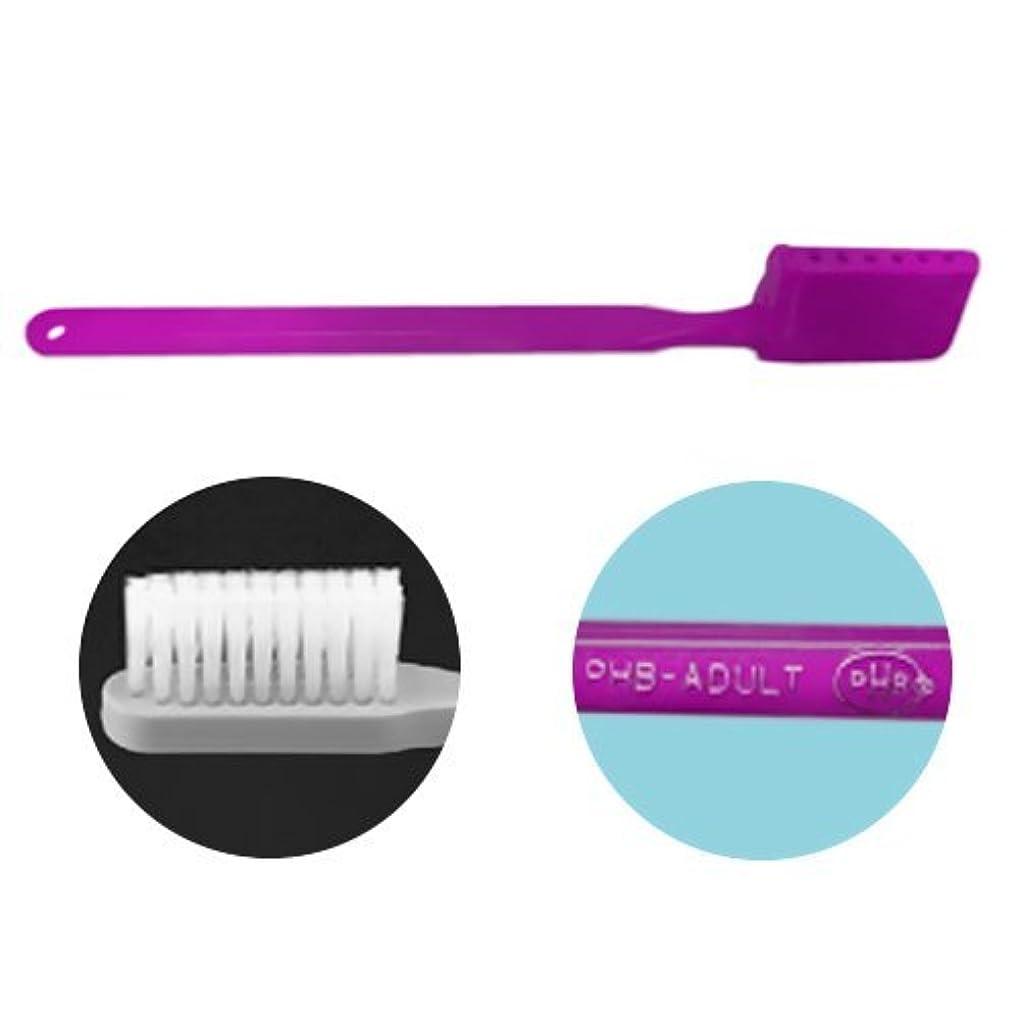 チャレンジ識字イタリックPHB 歯ブラシ アダルトサイズ 1本 ネオンパープル