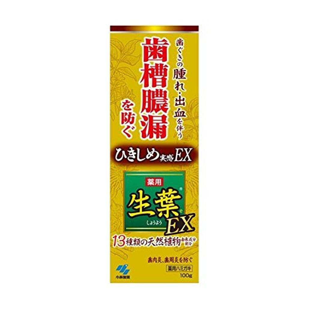 地味な連結するまともな生葉EX 100g x2個セット
