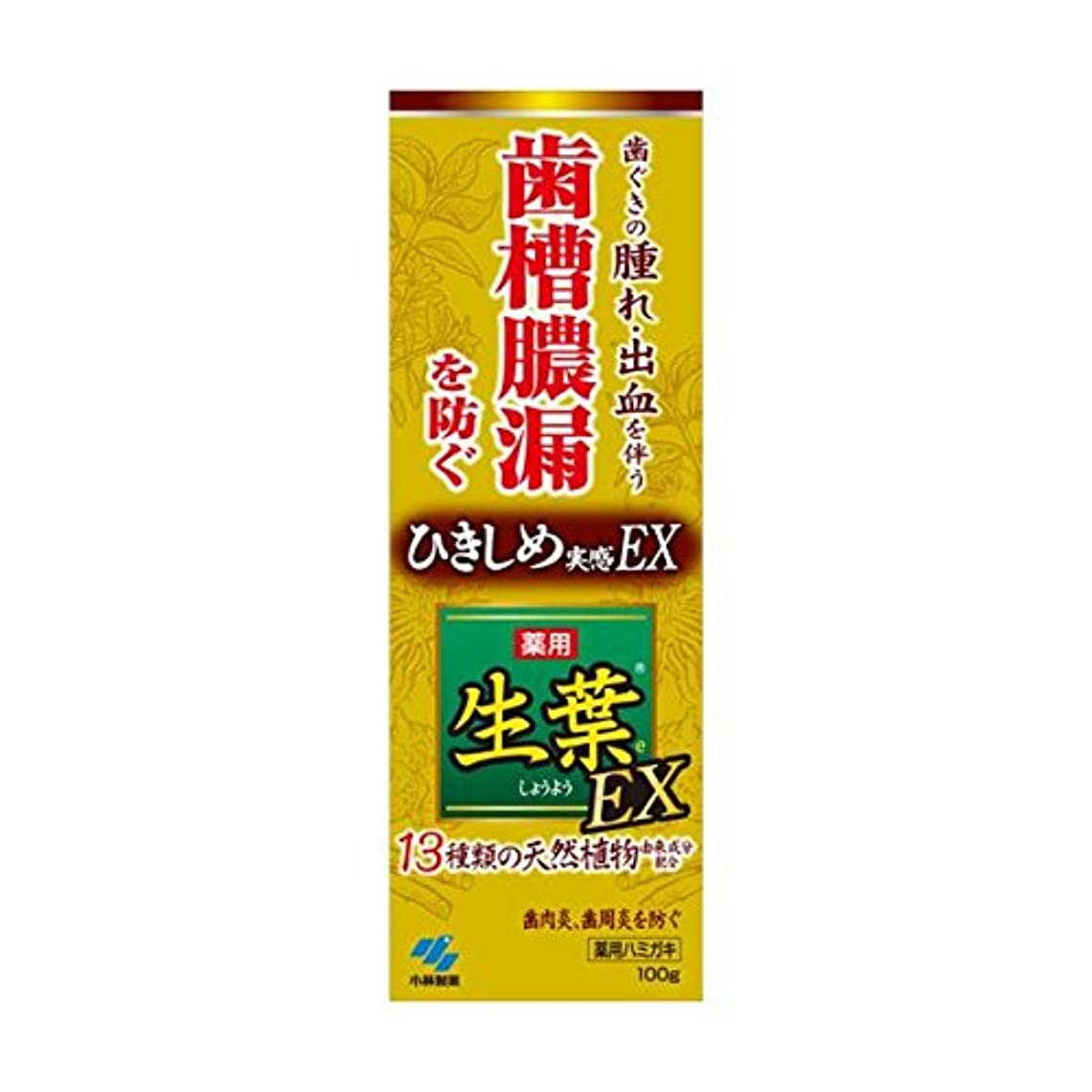 吸収剤蜂取り壊す生葉EX 100g x2個セット