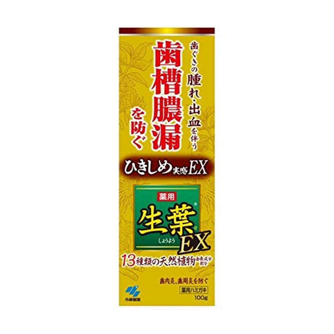 例重要関与する生葉EX 100g x2個セット