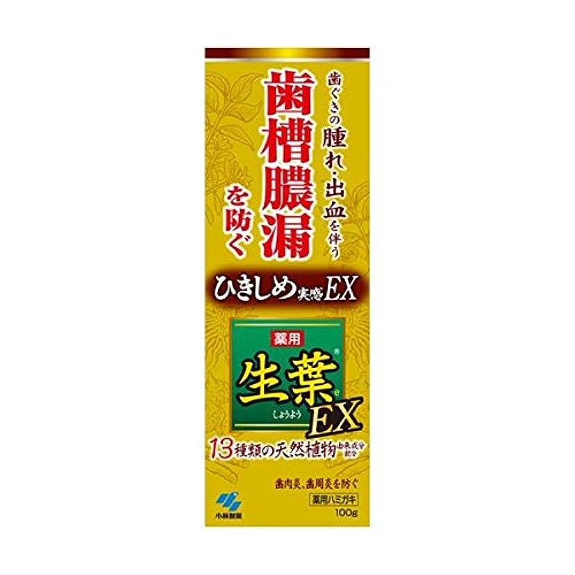 太字レプリカ考慮生葉EX 100g x2個セット