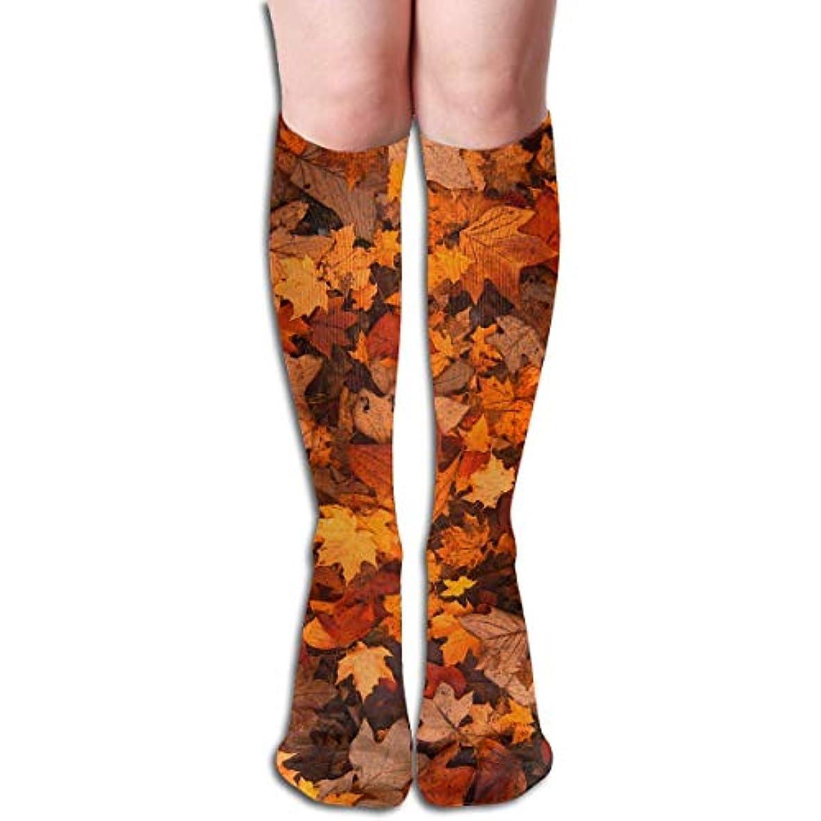 天高原許可3つの抗菌アスレチックソックス圧縮靴下クルーソックスロングスポーツ膝ハイソックス少年少女キッズ幼児用