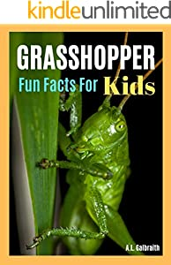 Grasshopper Fun Facts For Kids : Reading & learning animal photo children book (Bug World 2) (English Edition)