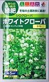 【種子】シロクローバ ホワイトクローバ 60ml