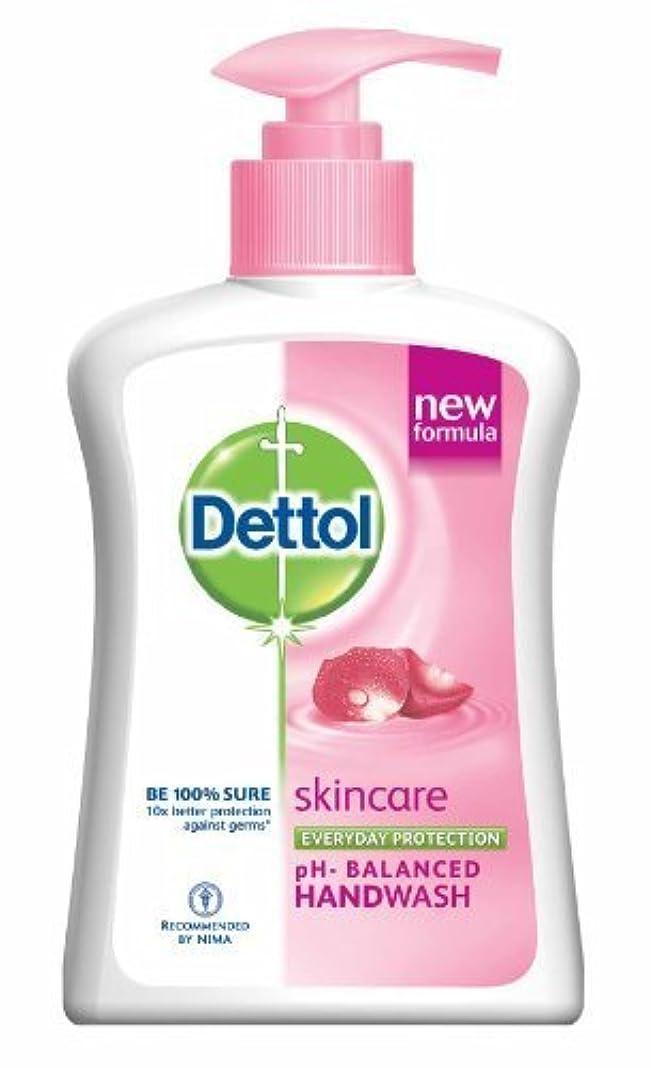 フェードアウトエンターテインメント使い込むDettol Skincare Liquid Hand Wash 225ml by Dettol [並行輸入品]