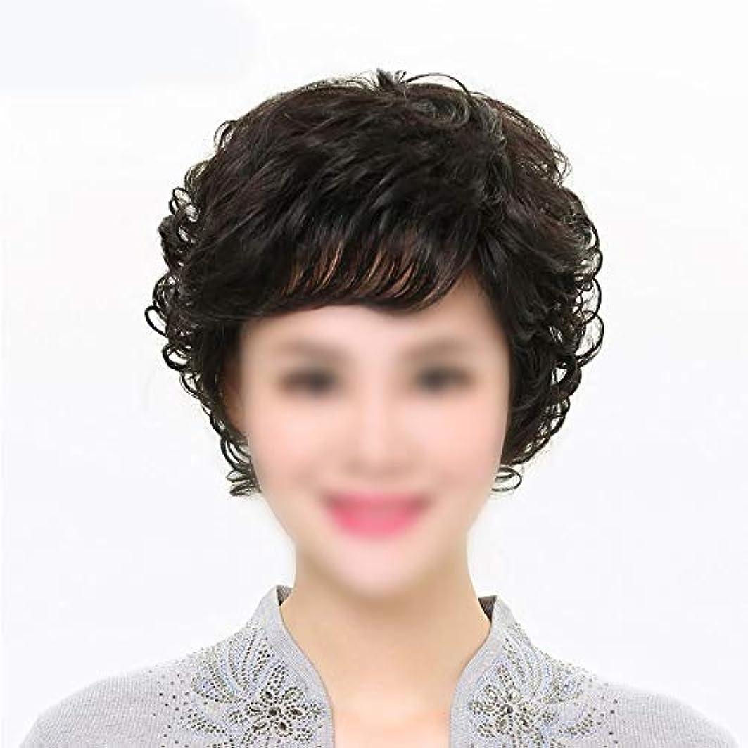 輸送スノーケル貴重なYOUQIU 母ヘアウィッグ中年ウィッグウィッグのために前髪を持つ女性の本当の髪のショートカーリーヘア (色 : 黒, Edition : Mechanism)