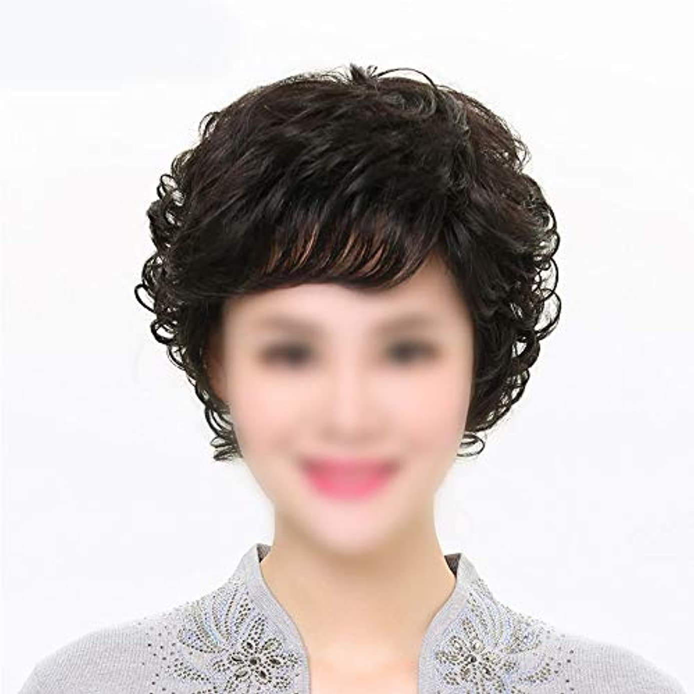 蒸発評価可能地下室YOUQIU 母ヘアウィッグ中年ウィッグウィッグのために前髪を持つ女性の本当の髪のショートカーリーヘア (色 : 黒, Edition : Mechanism)