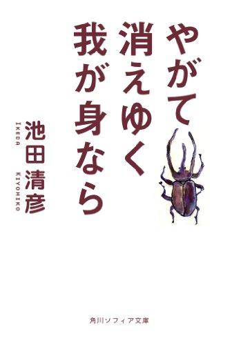 やがて消えゆく我が身なら (角川ソフィア文庫)の詳細を見る