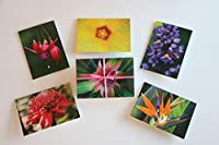 """hawaii-inspired NOTE CARDS WITH ENVELOPES–Photographed and made on Maui (3.5"""" X 5"""")"""