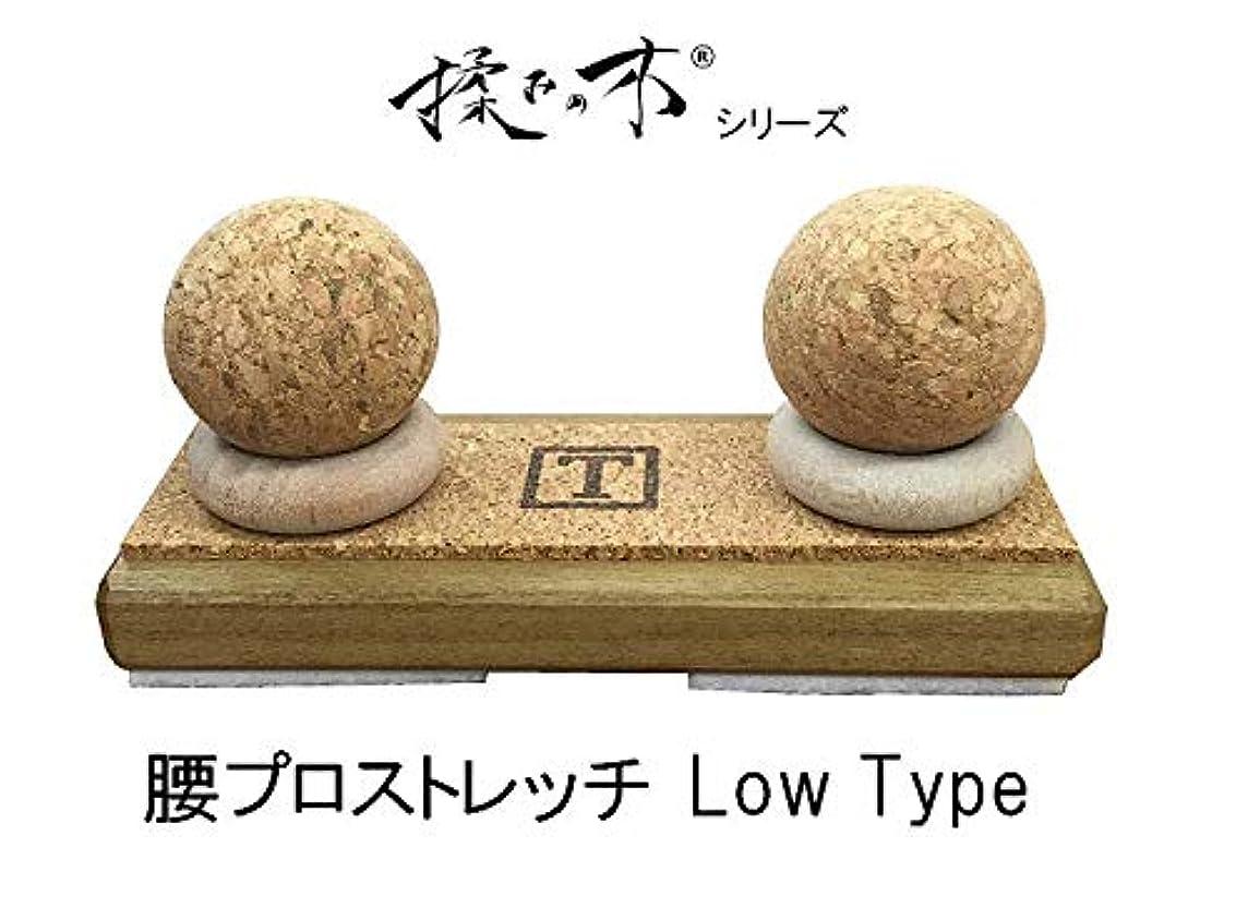 仮説好奇心プロフェッショナル『揉みの木シリーズ 腰プロストレッチ Low Type』つぼ押しマッサージ器 背中下部 腰 セルフメンテナンスを強力にサポート
