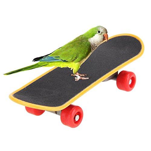 [해외]MIA-MOON 앵무새 서 잉꼬 새 미니 스케이트 보드 애완 동물 용품 스트레스 해소 장난감/MIA - MOON parrot stand parakeet bird mini skateboard pet supplies stress relief toys