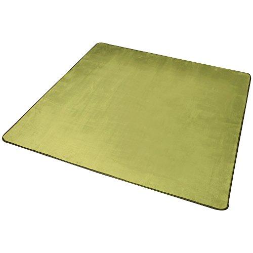 心地よいサラふわ触感 ラグ カーペット 洗える フランネル 200×250 約3畳 グリーン ホットカーペット対応 滑り止め付き 抗菌防臭