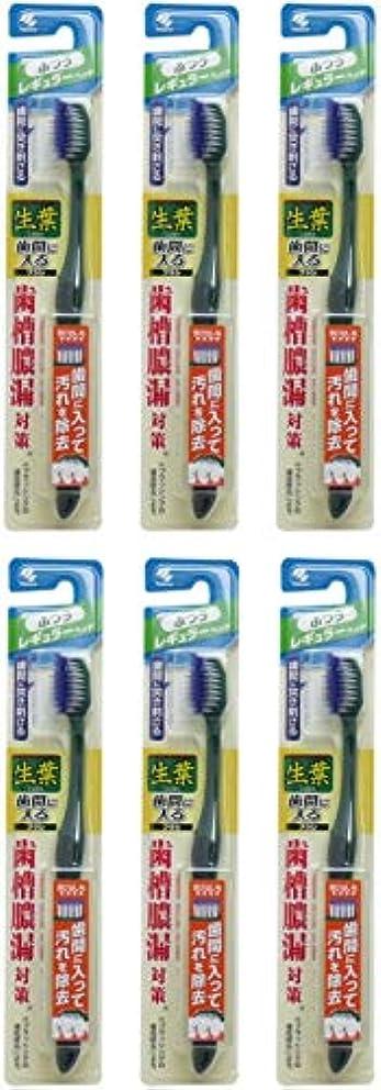 気づくなる急ぐ限りなく【まとめ買い】生葉(しょうよう)歯間に入るブラシ 歯ブラシ レギュラー ふつう【×6個】