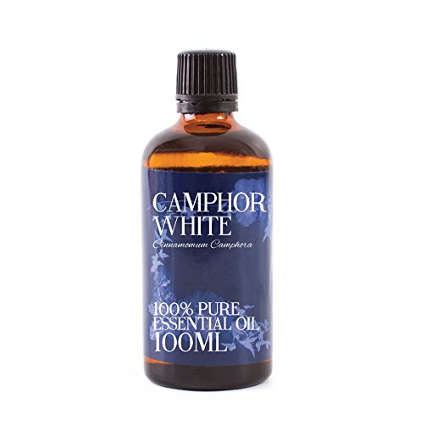 メダル呼び出す滴下Mystic Moments | Camphor Essential Oil - 100ml - 100% Pure
