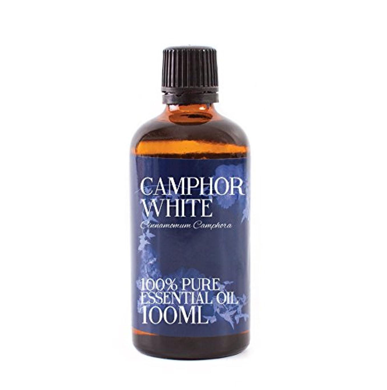 欠乏器官小道具Mystic Moments | Camphor Essential Oil - 100ml - 100% Pure