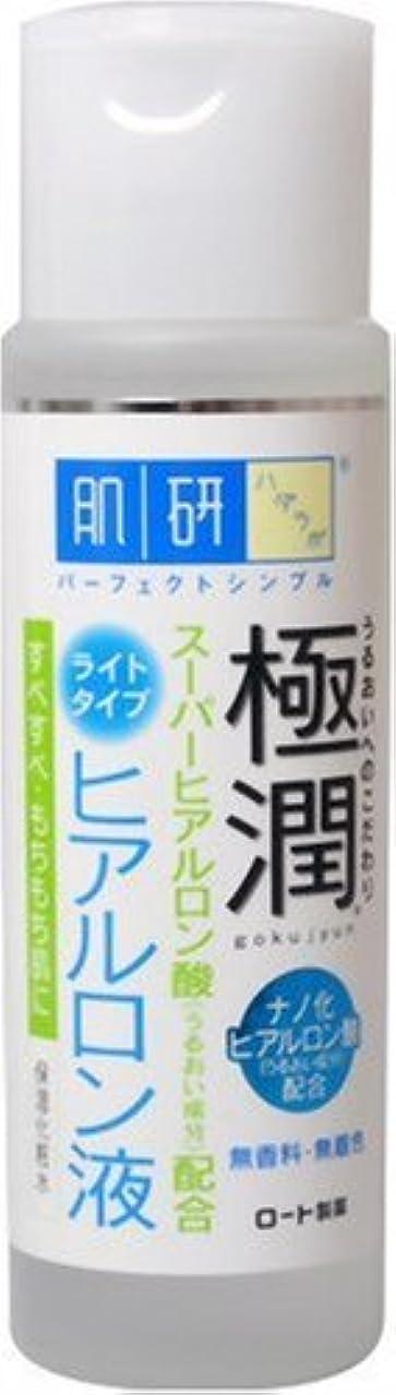 不倫または重なる肌研 極潤 ヒアルロン液 ライトタイプ 170ml