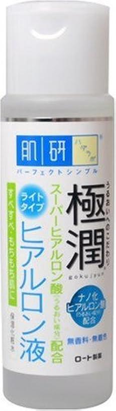 減る司書平らにする肌研 極潤 ヒアルロン液 ライトタイプ 170ml