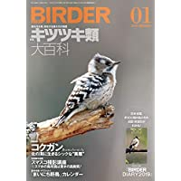 BIRDER(バーダー)2019年1月号 キツツキ類 大百科【特別付録 BIRDER DIARY 2019】付き