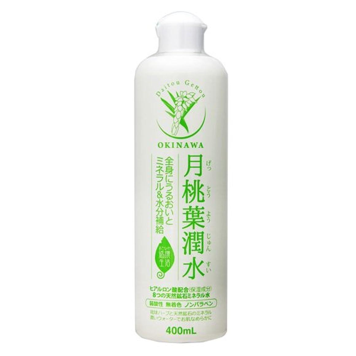 効率的付添人フルーツ野菜月桃葉潤水