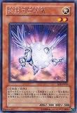 遊戯王OCG 紫光の宣告者 EOJ-JP019R_WK