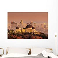 Wallmonkeys Griffith Observatory and Los Wall Mural Peel and Stick Graphic (48 in W x 32 in H) WM38029 [並行輸入品]