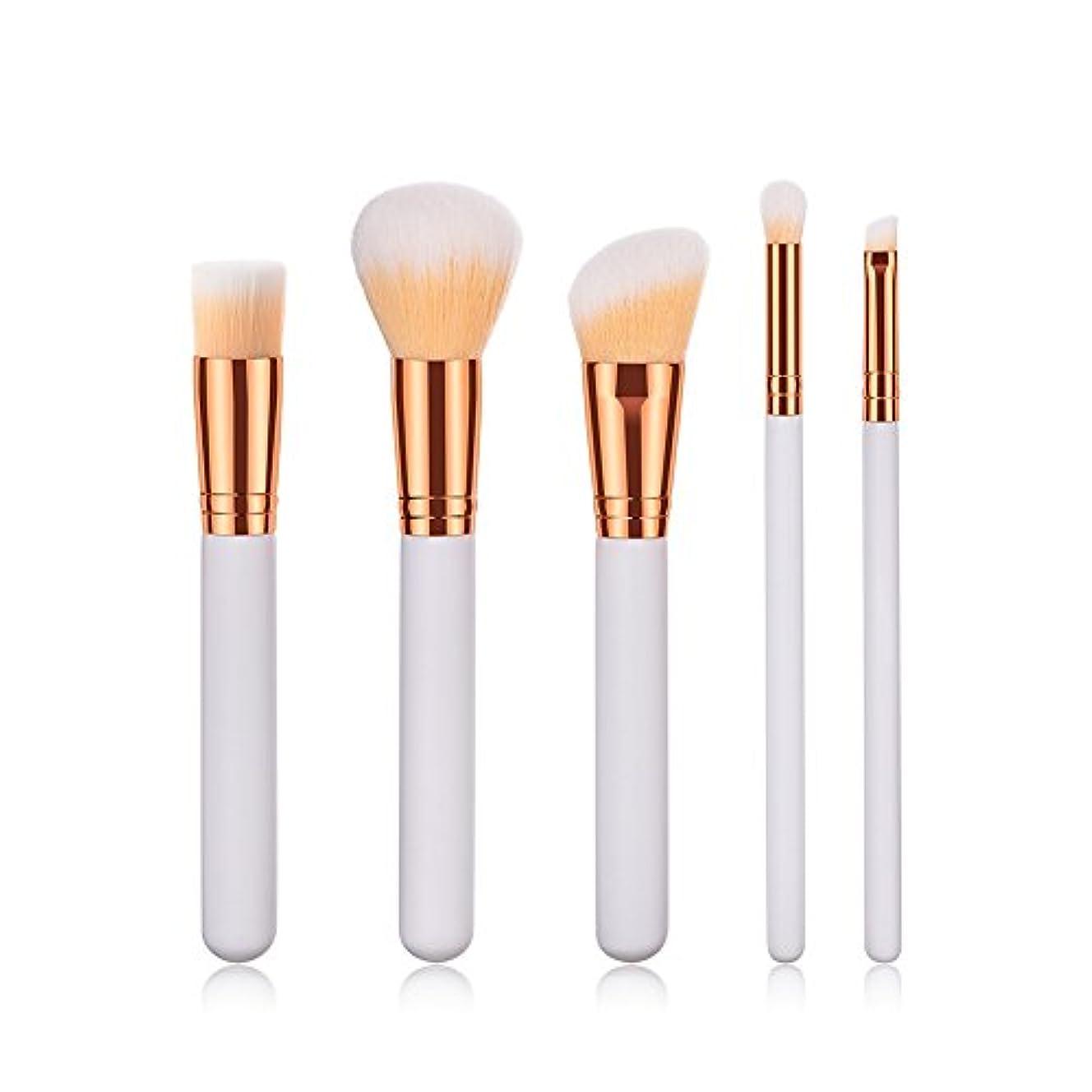 放射能摂氏度後方にRuikey メイクブラシ 5本セット 化粧筆 多機能化粧 人気 メイク道具(化妆道具) ふわふわ(蓬松)肌に優しい 毛量たっぷり プレゼント