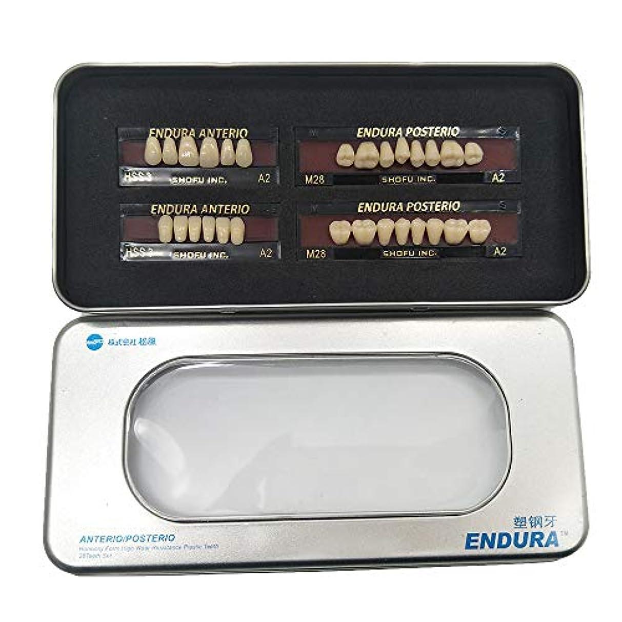 入り口ビジョンドローSHINAHUATONG 1ボックス/セット歯科用 義歯 サイズM28 カラーA2 28枚/セット