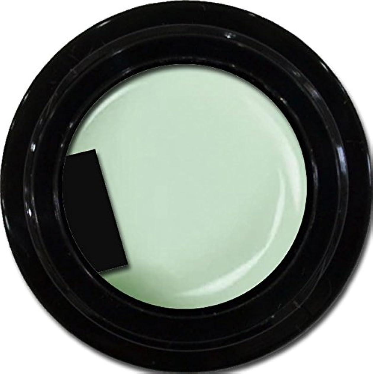 カラージェル enchant color gel M703 MintDesign 3g/ マットカラージェル M703 ミントデザイン 3グラム