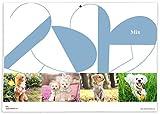 365カレンダー 2020年 MIX/ミックス カレンダー 壁掛け 卓上付き 2020-016