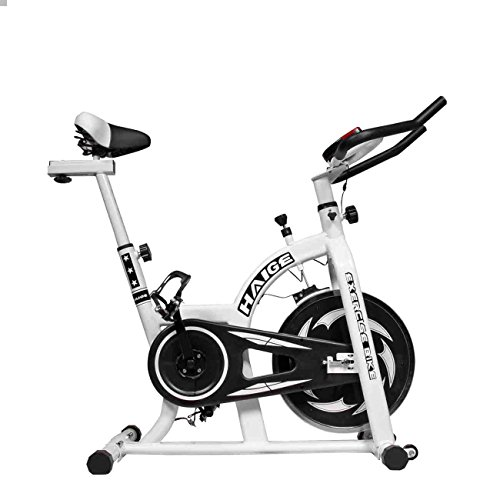 HAIGE フィットネスバイク スピンバイク HG-YX-5006 小型サイズで本格トレーニング カラー:ホワイト