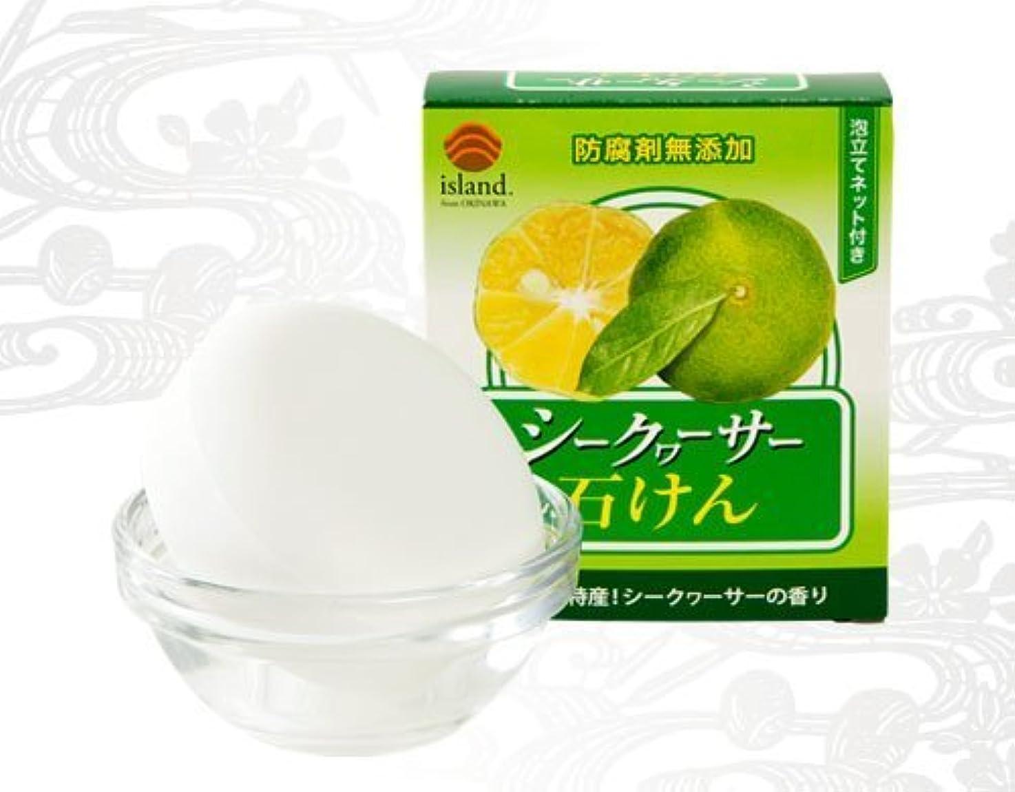 保護する野心的提供シークヮーサー石けん 90g×30個 アイランド 天然「シークワーサーオイル」を石けんに配合 洗い上がりしっとり クリーミーな泡立ちが好評の無添加石けん