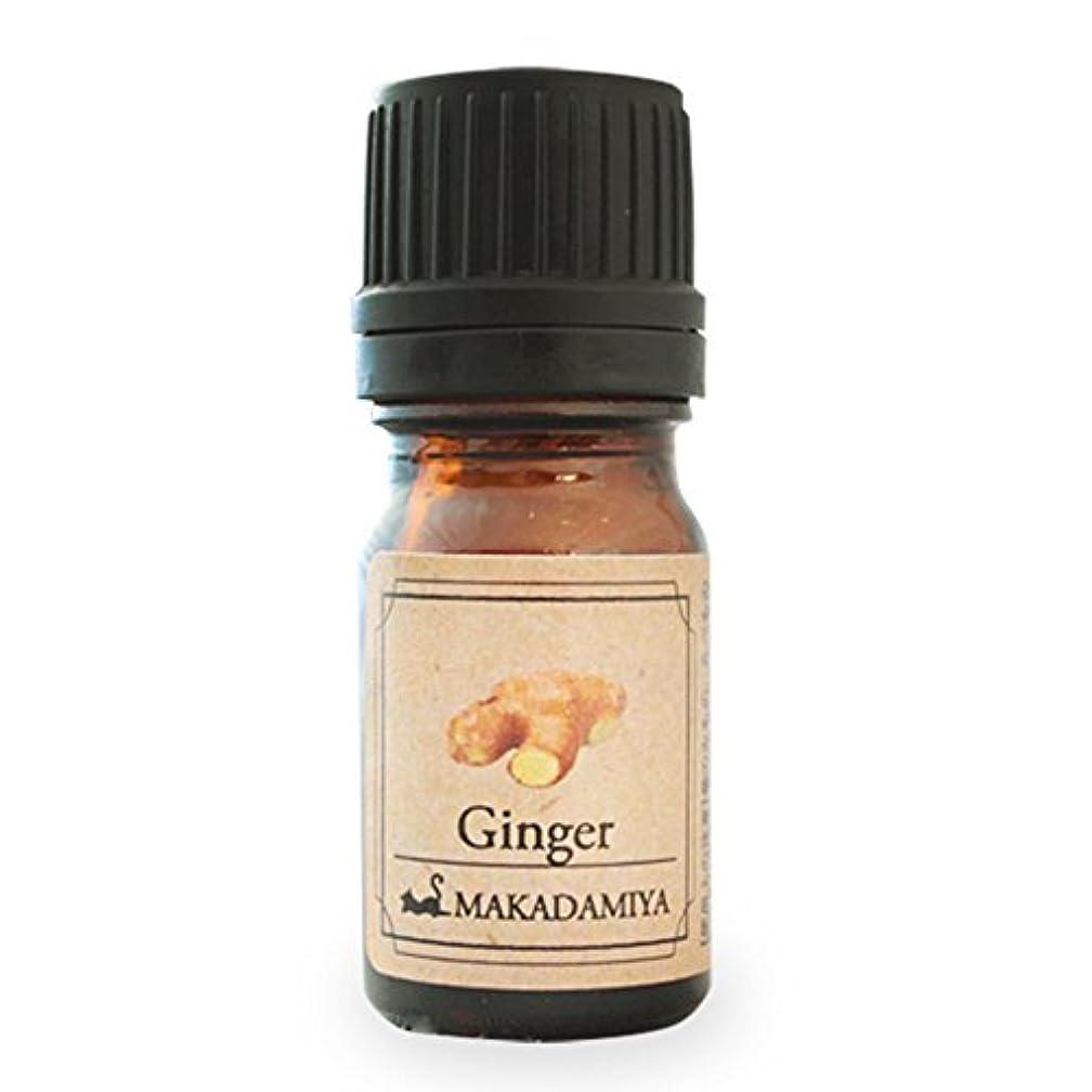 平和不潔宿泊施設ジンジャー5ml 天然100%植物性 エッセンシャルオイル(精油) アロマオイル アロママッサージ aroma Ginger