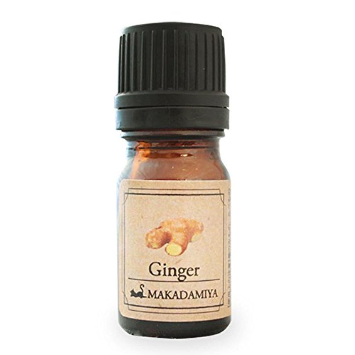 各浪費血まみれのジンジャー5ml 天然100%植物性 エッセンシャルオイル(精油) アロマオイル アロママッサージ aroma Ginger